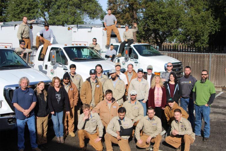 Acorn Arboriculture Service Team