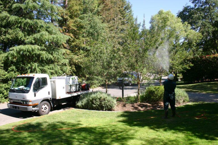 Tree Fertilization with Crew Spraying