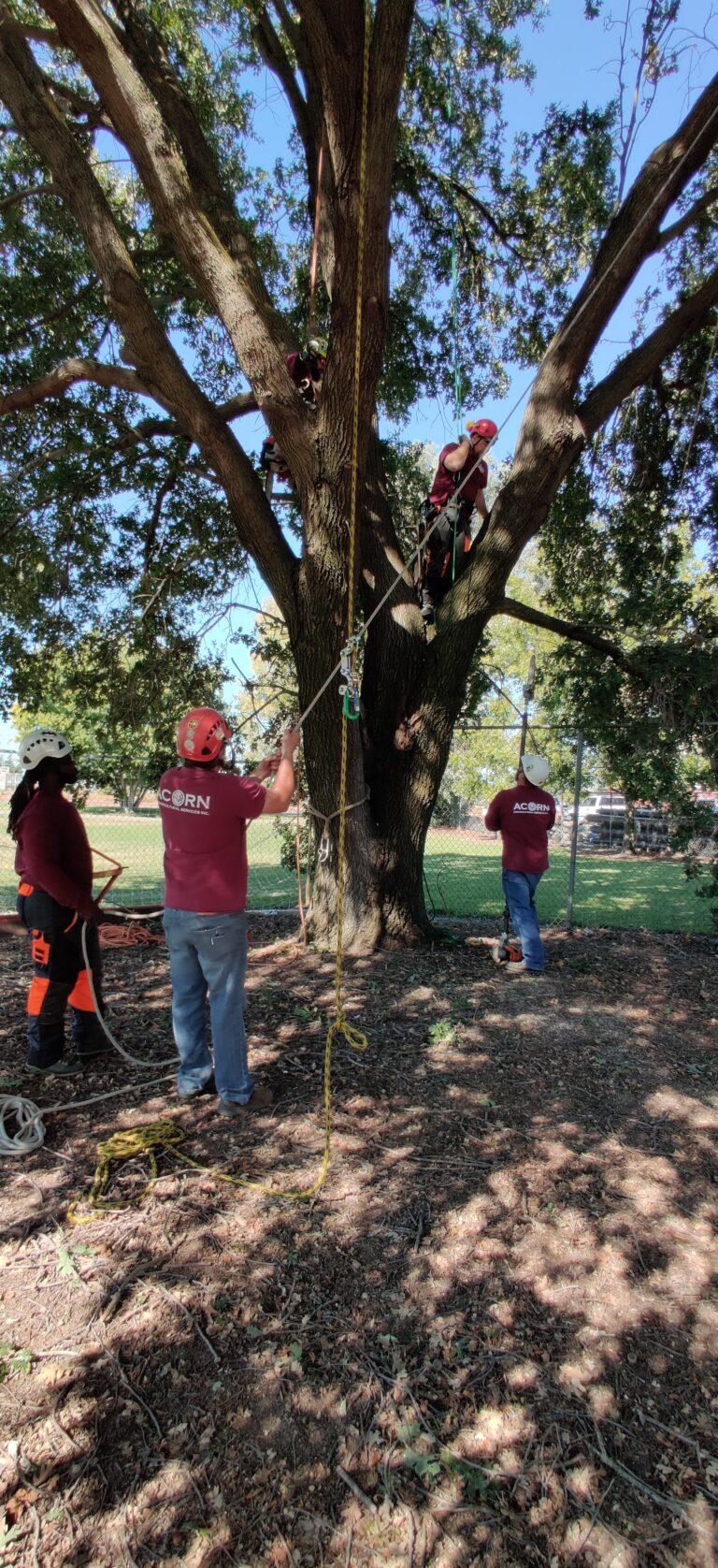 ACORN volunteering at CRC school 05